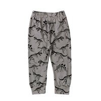 Wholesale newborn boy trousers for sale - Group buy Boys Pants Dinosaur Printed Long Leggings For Boys Newborn Baby Casual Fashion Cotton Haren PP Trousers
