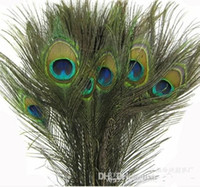 Wholesale 25 CM Genuine Natural Peacock Feather Elegant Decorative Accessories For Party Decoration