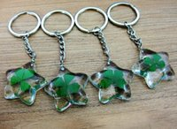 Wholesale Real Shamrock - free shipping 20 pcs key ring real lucid five star shamrock sample four leaf clover keychain