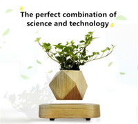 Wholesale Artificial Flowers Wooden - Wholesale Magnetic Air Plants Artificial Natural Wooden flowers hot selling Levitating Floating Bonsai decorate indoor and office