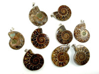 Wholesale fossil silver necklace - Wholesale 10 Pcs Natural Ammonite Pendant Fossil Charm with Silver Plated Bail, Fossil Pendants Charms Fashion Jewelry Popular Simple Style