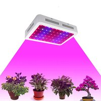 Wholesale Grow Lighting For Plants - US Stock! Full spectrum LED Grow Light 600 1000 1200W Double Chips LED Grow Lights Indoor Plants lamp for flowering and growing