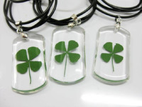 Wholesale Real Clover Necklace - FREE SHIPPING 12 PCS AWESOME REAL FOUR LEAF CLOVER Classical Pendant TAXIDERMY GIFT