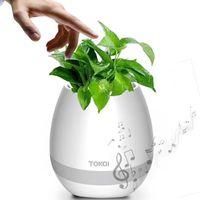 ingrosso altavoces bluetooth-Nuovo Smart LED Bluetooth Music Vase Speaker Real Plant Touch Sensing Flower Pot Carica USB Impermeabile Altavoces Haut-parleur