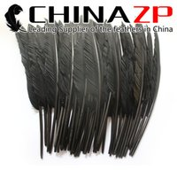 Wholesale pointer led online - Leading Supplier CHINAZP Crafts Factory cm inch Hand Select Dyed Dark Grey Goose Primary Pointer Feather For Decoration