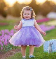 Wholesale Kids Zipper Ties - 2017 popular Lavender tie short kids girl birthday flower dress tulle zipper back cute butterfly princess pageant dresses