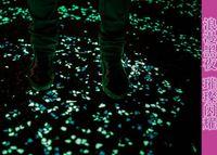 Wholesale Aquarium Fish Supply Wholesale - Good quality Glow In The Dark Luminous Pebbles Artificial Stone Fish Tank Aquarium Decoration Acrylic Walkway Garden Supplies 6000pcs
