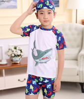 Wholesale Boys Dinosaur Suit - Swimwear for kids Boys bathing suits swimsuits Shark dinosaur animal Top+trunks +bathing cap 3pcs set High quality 2017 hotsale