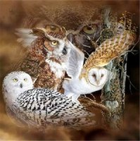 Wholesale new cross stitch kits resale online - New DIY D Mosaic Diamond Painting Cross Stitch kits animal white owl full Resin round Diamonds Embroidery needlework Home Decor yx0028