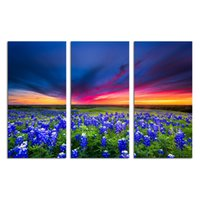 фиолетовая панель оптовых-3 панели HD печатный Природа Пейзаж холст искусство фиолетовый цветок настенная живопись современные Giclee печать / SJMT1894