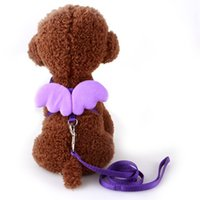 Wholesale 2017 New Arrival Dog Lead Collar Sets Cute Nylon Line Lead For Dog Walking Rainbow Leads Clollar Sets