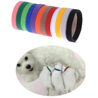 Wholesale Identification Dog Collars - 12PCS Puppy ID Identification Collars Adjustable Nylon Small Pet Dog Kitten Necklace Whelping ID Puppy Collars B25