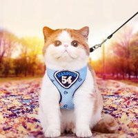 Wholesale Comfort Sets - Adjustable Cat Mesh Harness Collar Lead Set Comfort Walking Nylon Strap Collars For Cats Small Dogs 2 Sizes