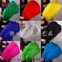 Wholesale Wholesale Feather Garments - Ostrich Feathers Factory Custom Decorative Dyeing For The Wedding Stage White Animal Hair Garment Accessories Feather Craft 0 4hx R