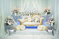 Wholesale Baroque Sofa - Indoor White Curtain Wedding Photography Backdrops Vinyl Soft Wool Blanket Baroque Sofa Studio Prop Flowers Princess Room Backdrop