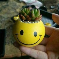 ingrosso piante da patio-New Mini Emoji Fioriere Decorative Vasi Cartoon Ceramica QQ Espressione Pianta Fioriere Fioriere da giardino Patio 6 Stili HH-C01-3