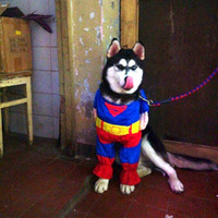 Wholesale Wholesale Clothes Stand - Movie Dog Clothing With Cape Cotton Maded Pets Vertical Standing Clothe Adjustable Magic Tape DC Comics Clothes Pet Supplies NO. 3&4
