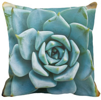 50%Cotton & 50% polyester outdoor pillow covers - Pillow Case Succulent Closeup Outdoor Square Sofa and Car Cushions Cover quot inch inch inch quot Pack of X