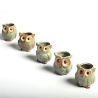 Wholesale Ceramic Owls Wholesale - 5 Pcs  Set Creative Ceramic Owl Shape Flower Pots For Fleshy Succulent Plant Animal Style Planter Home Garden Office Decoration