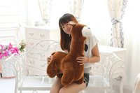 Wholesale Baby Pony Doll - 2017NEWAlpacasso God refers to the baby alpaca pony doll large plush toys hug horse stuffed toys