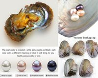 Wholesale NEW Oval Akoya Pearl Oyster White Pink Purple Black mm PARTY FAVOR Vacuum Packaging