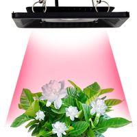 Wholesale Indoor Outdoor Plants - COB Led Grow Light 100W Full Spectrum Ultra-Thin Waterproof IP67 Flowers Growing Lamp for Vegetables and Bloom Indoor Outdoor Plant
