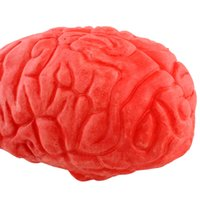 Wholesale Haunted House Masks - Wholesale-Halloween Horror Props Lifesize Brain Haunted House Party Scary Decorations Prank Toys Body Part Organ Gift