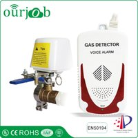 Wholesale Valve Leak - LPG Natural Gas Alarm Combustible Gas Leak Detector with DN15 Manipulator Valve