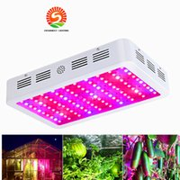 Wholesale Plant Lights For Sale - 600W 800W 1000W Hot Sale Double Chips LED Grow Light Full Spectrum For Veg Bloom Hydroponic Planting EU AU US UK Plug