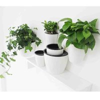 Wholesale Modern Decoration White Vase - 3 Pack Elegant White Plastic Self Watering Wall Planter Hanging Planter White Flower pot For Home Decoration