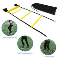 Wholesale 12 Ladder - 6 8 10 12 Rung 3 4 5 6M Agility Ladder Agility Training Ladder Speed Flat Rung with Carrying Bag for Soccer Football Speed Feet Training