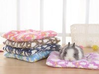 Wholesale Blue Dragon Cover - Small blanket cover is covered by a small carpet squirrel in guinea pig hedgehog dragon cat rabbit pet warm pad