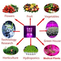 Red Blue Color Plant Growing System High Power COB LED Grow Light 1200W WIFI Controlado Bluetooth