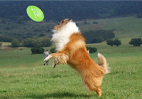 Wholesale Soft Flying Disc Dogs - PVC Soft Pet Frisbee Toy For Dog Training 23cm Green Yellow Blue Pink Random delivery 350PCS A250