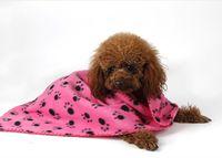 Wholesale Pet Fleece Blanket - 5pc Paw Print Pet Cat Dog Fleece Soft Blanket throws 60*70cm Warm Paw Print Cat Dog Puppy Fleece Soft Blanket Bed Mat p98