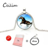Wholesale vintage silver horse pendant for sale - Group buy 2018 New Fashion Vintage Silver Chain Men Horse Necklace Cabochon Glass Pendant Jewelry With Leather Rope Necklaces As Gifts
