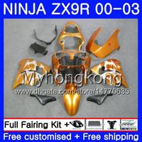 ingrosso zx9r oro-Corpo per KAWASAKI NINJA ZX 900 9 R ZX 9R 2000 2001 2002 2003 216HM.48 ZX900 ZX-9R 900CC ZX9 R ZX9R 00 01 02 03 Kit carene argentate argentate oro