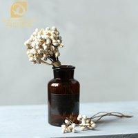 ingrosso bacche essiccate-Denisfen Fiori secchi naturali Bianchi fiocchi di neve Mazzo di rami Mini bacche per la decorazione domestica Ghirlande di fiori