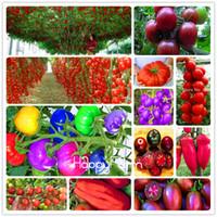 ingrosso bonsai pomodoro-A buon mercato 200 pezzi semi di pomodoro arcobaleno, semi di frutta verdura biologica bonsai, pianta in vaso per giardino di casa spedizione gratuita