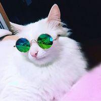 ingrosso occhiali da sole cucciolo-Occhiali da compagnia Moda per cane Cat Eye Protezione occhiali da sole Puppy Kitty Photo Puntelli Giocattoli Cool Round Frame Occhiali da vista Occhiali da vista