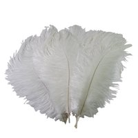 Wholesale 12 inch ostrich feathers - Colorful 10-12 inch(25-30 cm) Ostrich Feather plumes for wedding centerpiece wedding party event decor festive decoration Z134