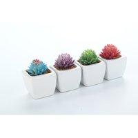weiße topfpflanze künstlich großhandel-4 teile / satz Künstliche Sukkulenten + Weißes Quadrat Gefälschte Aloe Lotus Seltene Pflanzen Topf Landschaft Hausgarten Decor