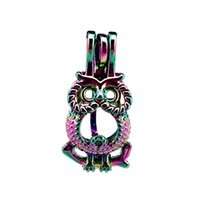 Wholesale big eyes oil for sale - Group buy 10pcs Rainbow Color Cute Owl Big Eye Beads Cage Locket Pendant Diffuser Aromatherapy Perfume Essential Oils Diffuser