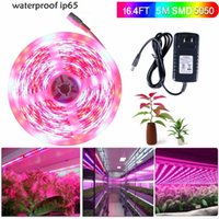 Wholesale Grow Lights Rgb - 5m 5050 LED Grow Lights DC 12V waterproof Growing LED Strip Plant Growth Tape Fita De Light Set with Power Adapter