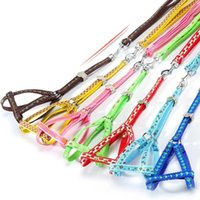 Wholesale Wholesale Small Spring Clips - Dog Harnesses Type Pet Leashes Double-deck Nylon Traction Rope With Steel Clip High Quality Durable Pet Supplies Random Color 2 Sizes