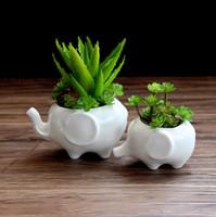ingrosso vaso di bonsai in ceramica-Fioriere fioriere Elefante bianco ceramica pote de vidro in vendita vasi da giardino fiore vasi macetas vaso fleur vasi bonsai