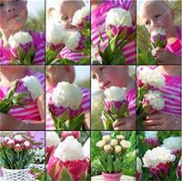 Wholesale tulip bag wholesale - 30 pcs bag Tulip seeds Rare bonsai flower seeds ice cream as beautiful tulips potted perennial home gardens tulip pants