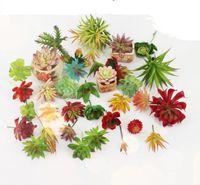 ingrosso bonsai succulenti-Piante artificiali con vaso Bonsai Cactus tropicale Pianta succulenta finta vaso decorativo per la casa