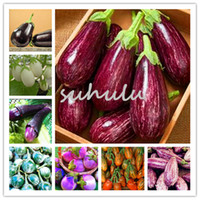 Wholesale Plant Pots For Balconies - 100 pcs bag purple eggplant seeds,bonsai Organic delicious seeds vegetables,Balcony or courtyard potted plant Edible food seeds for garden
