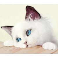 elmas nakışı 3d kitleri toptan satış-Sevimli kedi diy elmas boyama kiti 5D DIY Çapraz Dikiş Tam Elmas Nakış 3D Elmas Mozaik Boyama Yılbaşı Hediyeleri Ev dekor